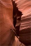 Waterholes and Antelope Slot Canyons