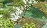Plitvice Lakes National Park -L