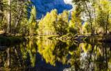 River Reflections -L