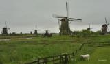Netherlands   -   Kinderdijk