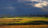 Pagosa Colorado resort  golf course