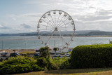 The Wheel - Exmouth