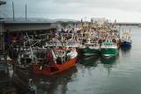 Part of the Brixham Fishing Fleet