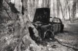 Burnt Car.jpg
