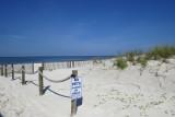 Mexico Beach, Florida 2021