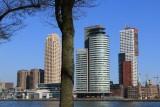 Rotterdam. Modern Architecture
