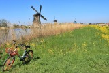Kinderdijk's Windmills