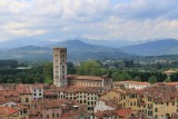 Lucca. View from Torre Guinigi