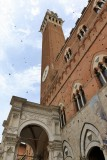 Siena. Torre del Mangia
