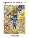 Norman Rich: Wildlife Books