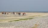 la plage de Cayeux