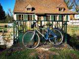 my blue bike