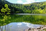 le lac des corbeaux, La Bresse