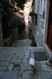 Ulica Svete Marije - 5425