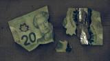 Mowed Money