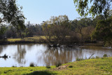 Latrobe River - Newborough