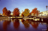 Couleurs d'automne au Vieux-Port