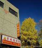 Le Quartier chinois