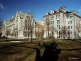 The McGill Campus