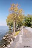 Le chemin du lac