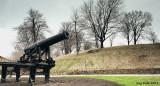 Canon de défense