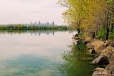 Sur le bord du fleuve