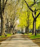Parc_urbain.jpg