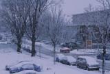 Tempete de neige Anjou