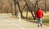 Marche_avec_son_chien_dans_le_parc.jpg