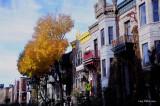 Ambiance_d_automne.jpg