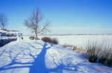 Paysage_hivernal.jpg