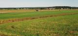 Scene_rurale.jpg