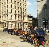 Calèche dans le Vieux-Montréal