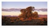 The Flinders Ranges 2018