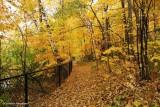 Trail around MacKay Lake