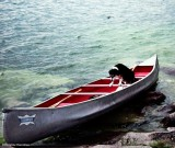 I'll paddle my own canoe!