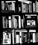 My world - 4:  Books