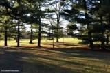 My world - 11:  Rockliffe Park