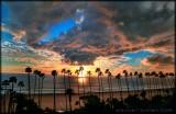 Fiery Sunset Palms