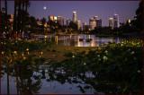 Echo Park Twilight