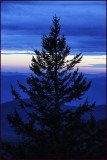 Smokey Mountains Pinetop