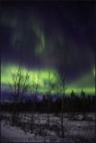 Whitehorse Aurora Borealis