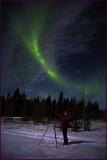 Whitehorse Aurora Borealis Michelle