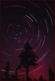 Star Trails North Star Polaris