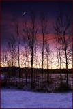 Yukon Sunrise Whitehorse