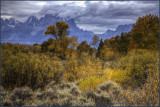 Grand Tetons Autumn