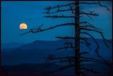 Moonrise Backroad Wilderness