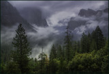 Misty Tunnel View