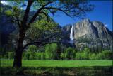 Meadow To Yosemite Falls