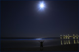 Blue Tide Moonlight